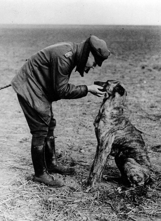 MjkyOTI5MQ33historical-photos-rare-pt2-red-baron-dog
